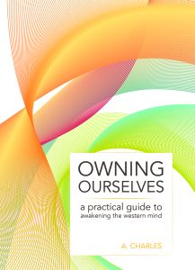 Owning Ourselves book cover