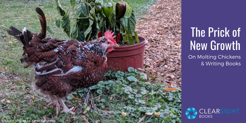 The Prick of New Growth: On Writing and Chickens